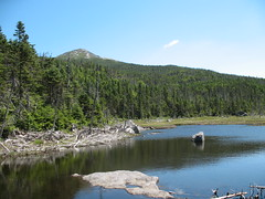 Gray Peak 045