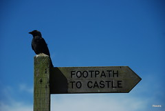 Tintagel, Cornwall (oranges and lemons) Tags: uk england castle arthur cornwall signpost raven footpath tintagel