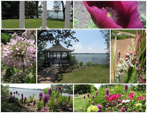 Noerenberg Gardens 7-3-2010 7-16-21 PM
