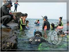 20100704龍洞浮潛夏令營47