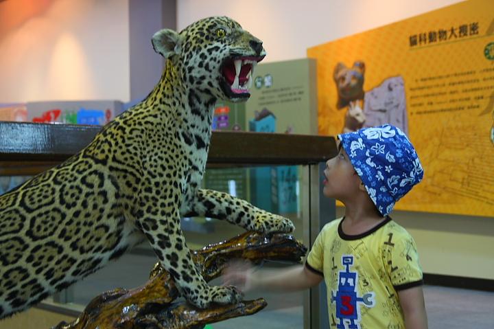台北市立動物園台灣動物教育館0004
