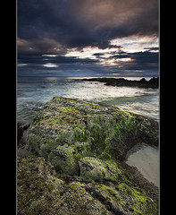 Life in the Intertidal Zone (danishpm) Tags: seascape beach clouds sunrise canon australia wideangle aussie aus 1020mm manfrotto rockpools sigmalens cabarita greatphotographers eos450d 450d tweedshire sorenmartensen tweedarea hitechgradfilters 09ndreversegradfilters