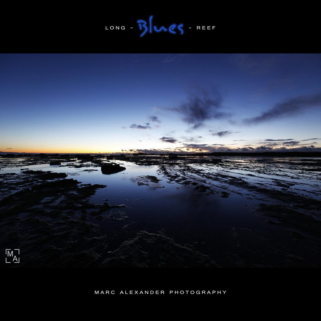 Long Reef Blues