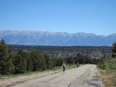 Rock Creek Rd (White Mountains on the back)