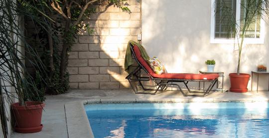 backyard+loungers+palm+pool