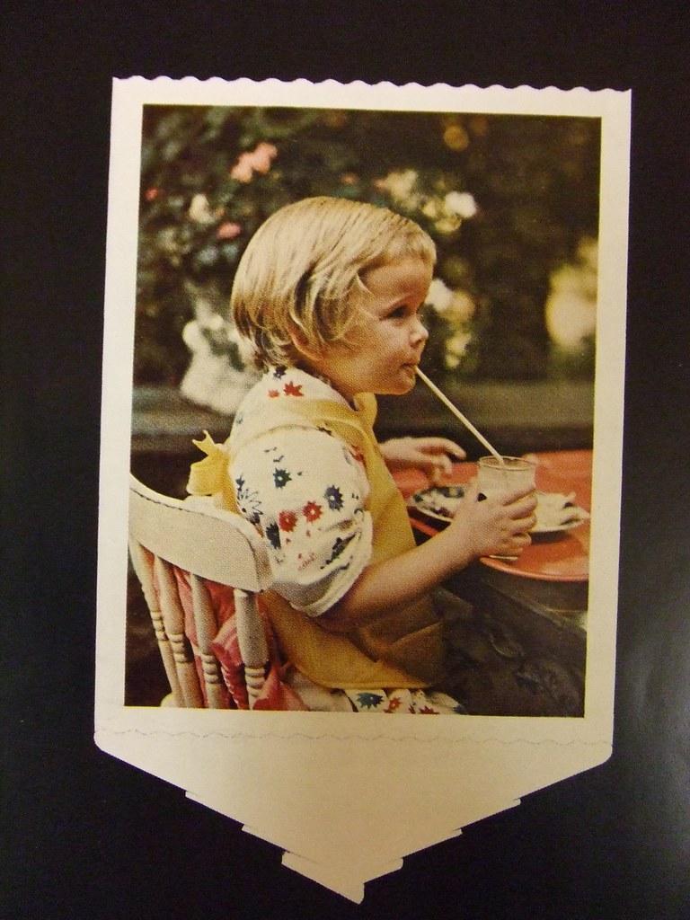 Polaroid catalog