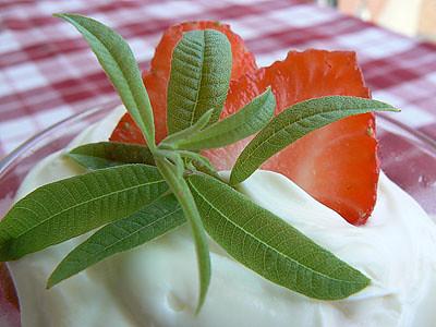 fraise et verveine.jpg