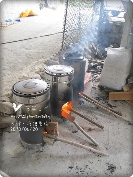 大溪摸硯農場132-2010.06.20