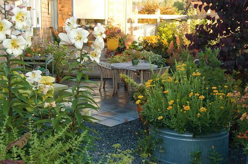valerie easton garden