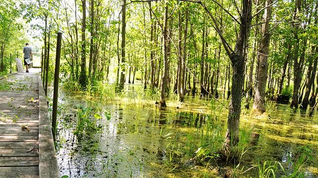 Hullet Provincial Wildlife Area