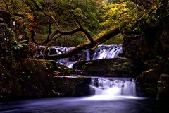 Forest of the Falls wales (Leo smith - rocket2cool) Tags: trees plants green fall water wales forest canon landscape moss woods long exposure leo sigma smith falls nd beacons filters hdr 18125mm 450d rocket2cool breckion