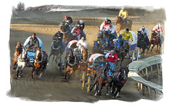 Power and Speed (njchow82) Tags: horses motion calgary race speed together thrill riders calgarystampede excitment chuckwagonrace outriders beautifulexpression dmcfz18 njchow82 edgeusingcorel