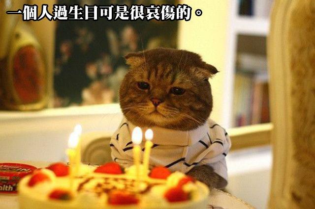 今年也是獨自過生日