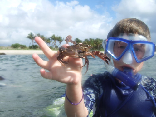 Jack catches a swimming crab