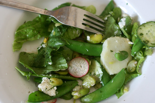 Broad bean and goats cheese salad with mint, dill and potato