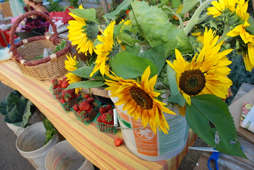 sunflowers and strawberries and lettuce