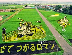 RiceArt in Japan 2010 (Glenn Waters in Japan.) Tags: art japan japanese nikon rice paddy aomori  japon 2010    inakadate d700 paddyfieldart nikond700  glennwaters nikkor2470mmf28gedafs riceart   tanboart