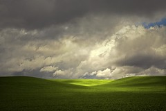Where Earth Meets Sky There is Light (Anne Strickland) Tags: washingtonstate stormysky palouse stormyskies rurallandscapes palousewashington thepalouse wheatfileds takenbyaphotographeroutstandinginthefield