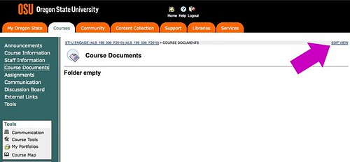 Screenshot of the Blackboard course highlighting the Edit View link in the top right corner of the frame