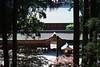 延暦寺 比叡山 京都。ENRYAKU-JI, MONT HIEI,KYOTO