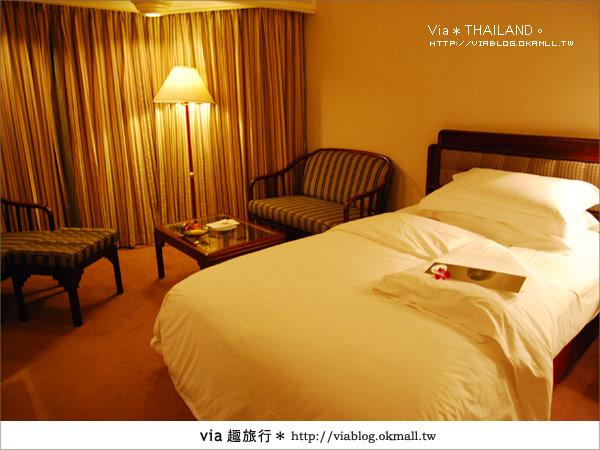 【泰國旅遊】2010‧泰輕鬆~Via帶你玩泰國曼谷、普吉島!8