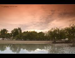 July (Syafiqjay) Tags: olympus filter malaysia cokin sescape kelanang syafiqjay photofibre