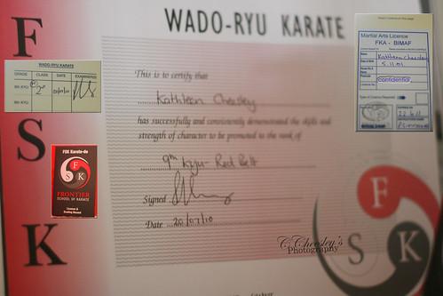 Karate Grading Certificate