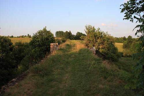Romincka Forest Landscape Park