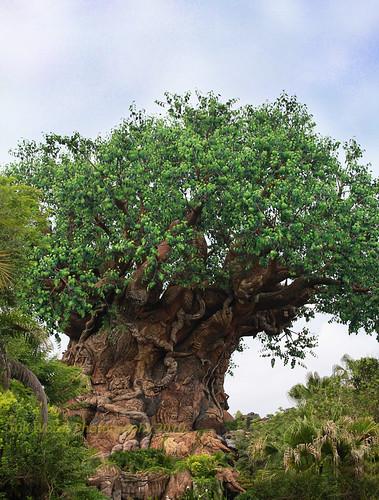 7.11-tree of life