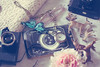 (_acido) Tags: pink flowers blue light glass composition vintage toy photo bed lomo soft fawn cameras blanket frame whiteness canoneos450d50mm