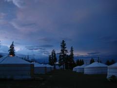 ger camp at night