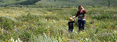 Walking back (elayne_crain) Tags: meadow benjamin wyoming grandtetons elayne