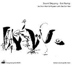Soir Numgi - Sound Skipping
