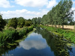 River Chelmer, Essex (St Clements) Tags: summer water river row essex banks chelmer