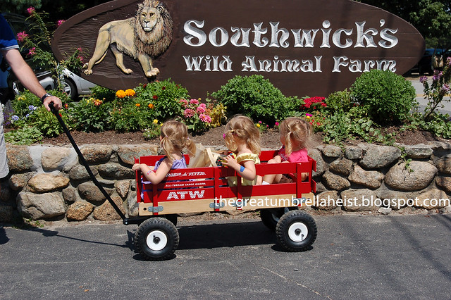 Southwick zoo coupons discounts