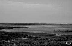 Grey River (LaKry*) Tags: nature water river landscape grey blackwhite grigio fiume natura po acqua paesaggio biancoenero deltadelpo boccasette