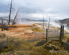 Dead Trees and Terraces at Mammoth Hot Springs (akemp42) Tags: trees sky mountains water clouds reflections yellowstonenationalpark yellowstone hotsprings deadtrees mammothhotsprings terracing tokina1116 nikond300s