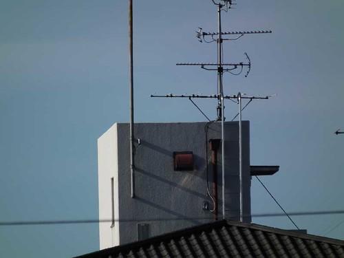 デジカメ望遠側