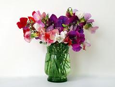 Sweet Peas en masse (DavidWF2009) Tags: bunch vase colourful sweetpeaflower