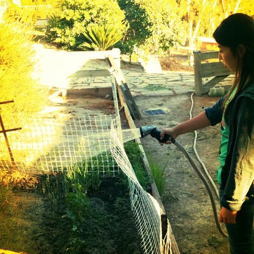 Her vegetable garden