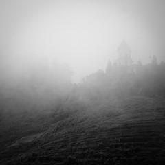 In the Mist (veronique robin) Tags: bw mist mountain rain clouds montagne pluie hills vietnam ricepaddies agriculture nuages brouillard sapa southasia asianagriculture fransipan