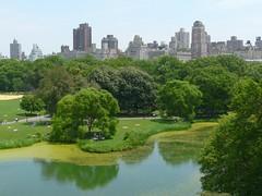 Vue depuis Belvedere Castle (benontherun.com) Tags: park nyc lake newyork centralpark manhattan lac parc belvederecastle