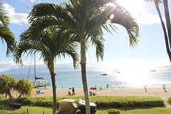 at Westin Maui