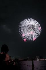第23回東京湾大華火祭 白菊に紅小割浮模様