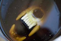 Skull Emerges