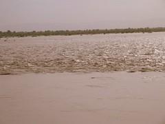 Flood waters raging past Benazirabad (Salman Siddiqui) Tags: pakistan hyderabad ahmed sindh floods hala shah qazi nawab kotri bhit jamshoro bhanot sakrand benazirabad mattiari