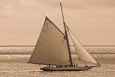 _DSC1660.jpg Mariquita (mary~lou) Tags: classic sepia boat sailing yacht toning gamewinner 15challengeswinner thechallengegame challengegamewinner pregamewinner nikond90mary~loumaryfletcher