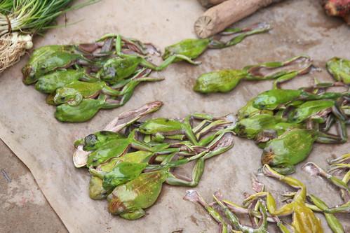 Frogs, luang prabang market