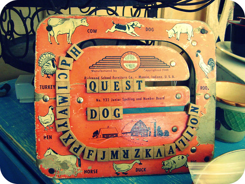 quest dog
