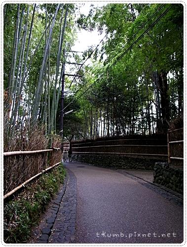 野宮神社 (8)